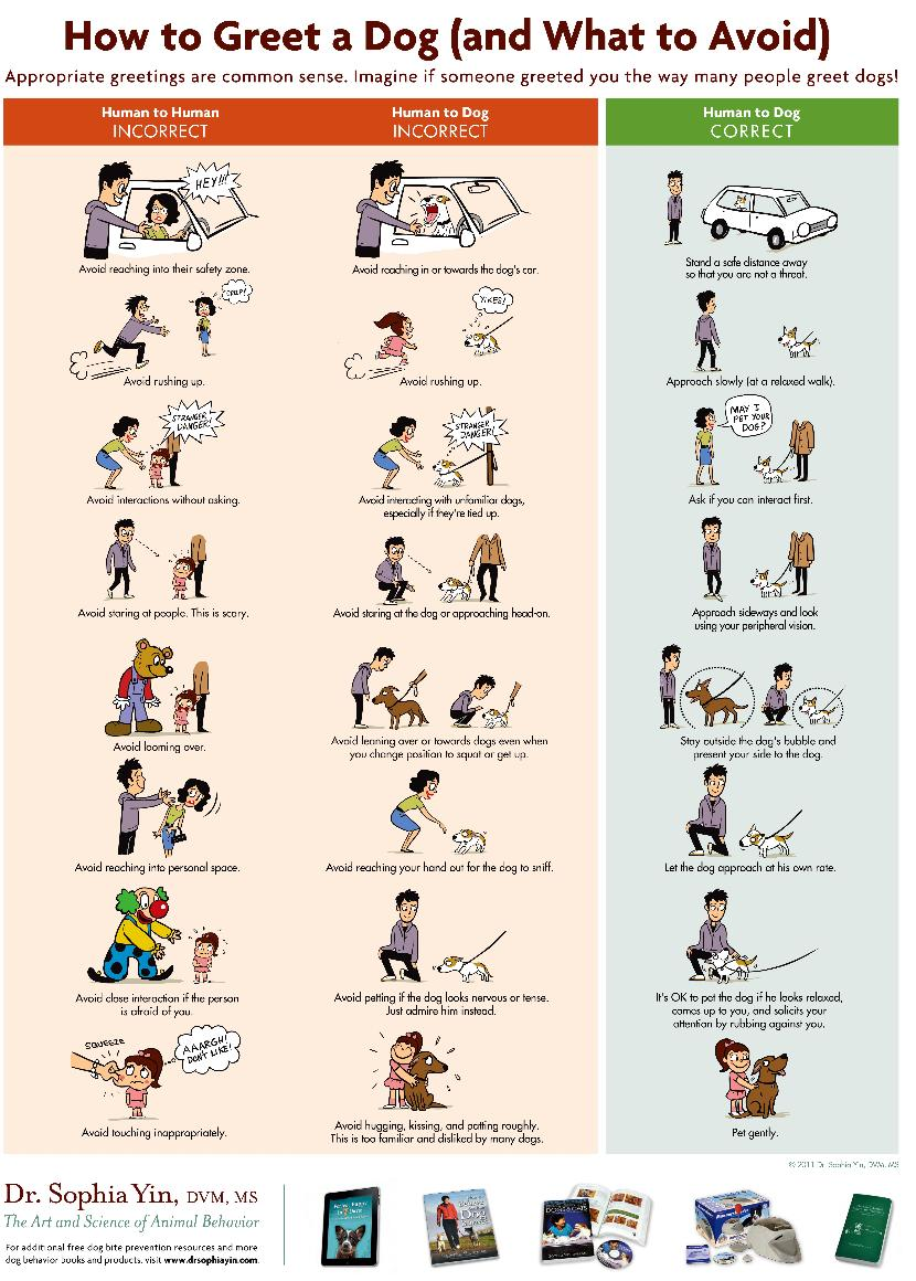 Speak pup here are a whole lot of very useful posters on meeting and greeting dogs especially useful for those claw staff and volunteers who are also involved with kristyandbryce Image collections