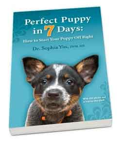 Buy Perfect Puppy... eBook